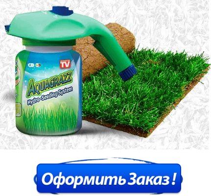 где в Братске купить жидкий газон aquagrazz